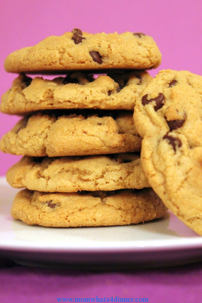 chew chocolate chip cookie
