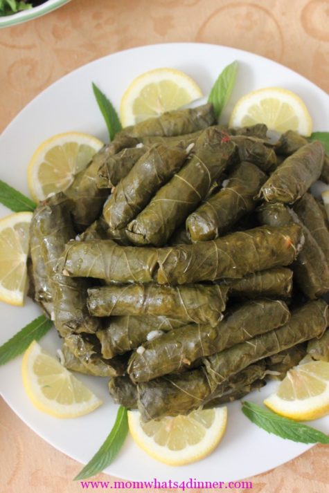 Dolma stuffed grape leaves