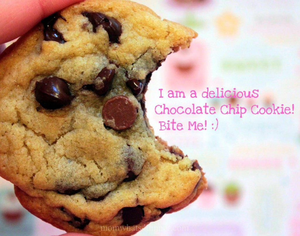 Happy 3rd Blogiversary! Lets Celebrate with Chocolate Chip Cookies!